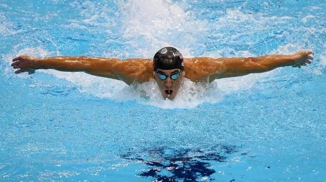 техника плавания дельфином
