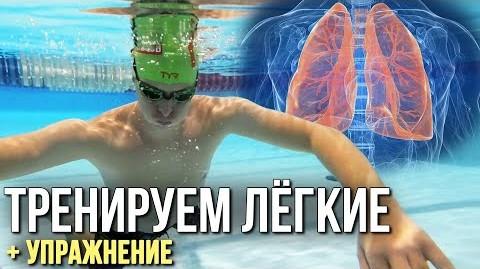 Как увеличить объём лёгких? Как задерживать дыхание надолго?