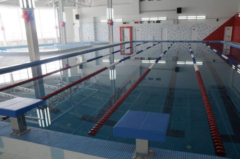 Школа плавания в Нижнем Новгороде