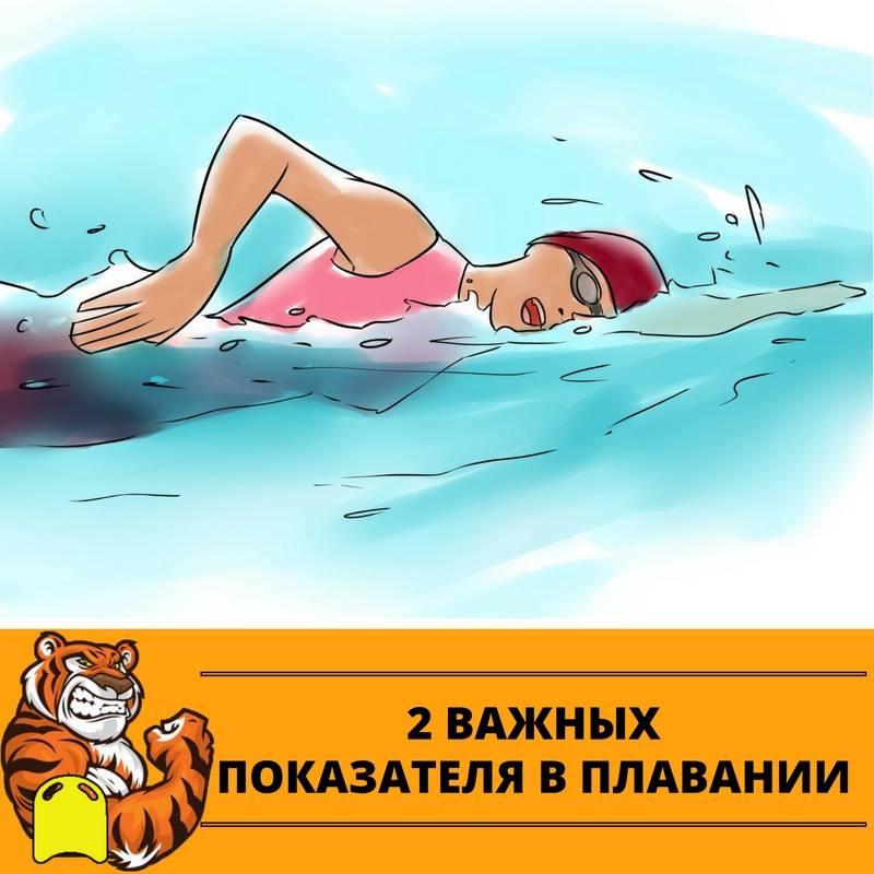 Картинки спасибо тренеру по плаванию
